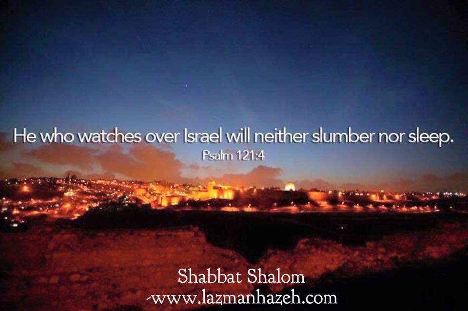 Shalom my Love