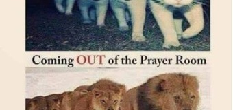 Prayer: are we kittens or lions?