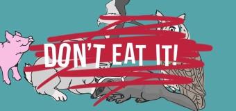 Don't Eat It – Leviticus 11